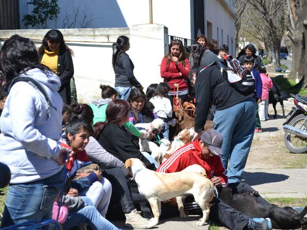 Vacunaci n antirr bica en villa arguello municipalidad for Vivero arguello
