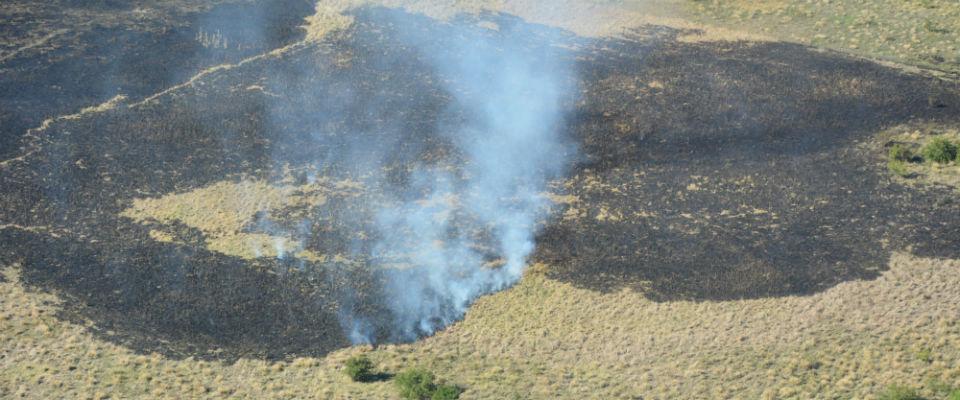 Acciones de Defensa Civil y Bomberos Voluntarios para dejar controlado el incendio que afectó a la zona de Los Talas